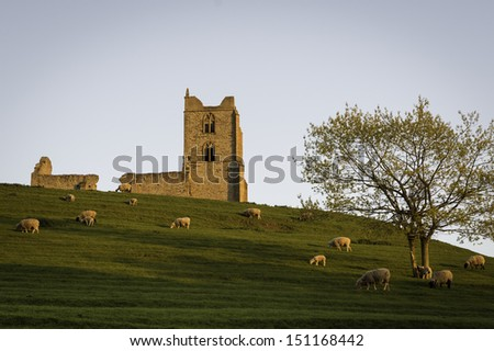 The ancient church ruins atop Burrow Mump on the Somerset Levels is now a war memorial. Sheep graze on the hillside pasture.