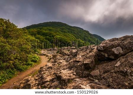 The Appalachian Trail, on Little Stony Man Cliffs in Shenandoah National Park, Virginia. - stock photo