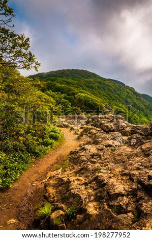 The Appalachian Trail on Little Stony Man Cliffs in Shenandoah National Park, Virginia. - stock photo