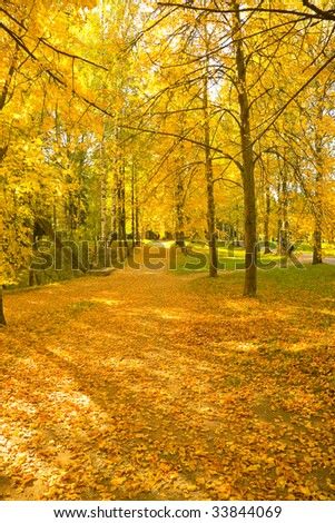 the autumn landscape with yellow, red and green trees - stock photo