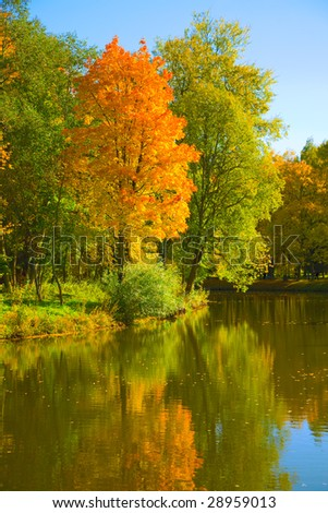 the autumn landscape with yellow trees and small pond - stock photo