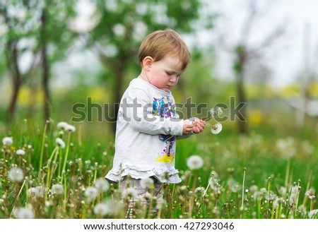 The baby on a green meadow breaks white dandelions.