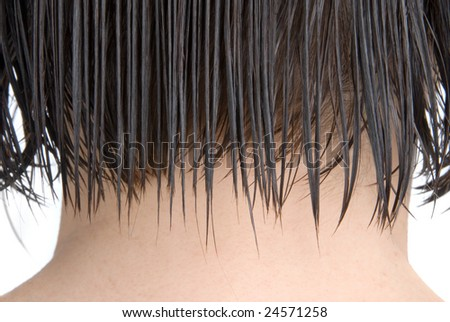 The back of a woman's head just after coming her washed hair. - stock photo