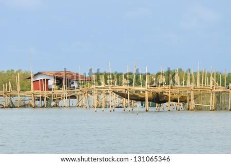 The Barramundi fish farm at Takham ,Chachoengsao,Thailand - stock photo