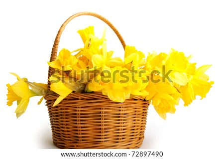 The basket with flowers - stock photo