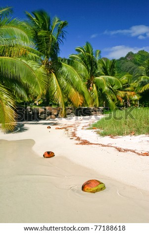 The beach in paradise island Moorea, French Polynesia - stock photo