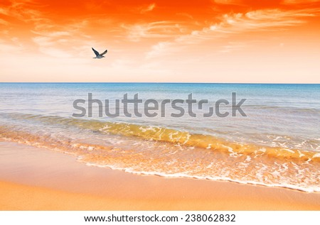 the beach is dyed red with sunrise - stock photo