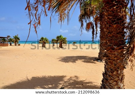 The beautiful beach of Santa Maria, Sal, Cape Verde - stock photo