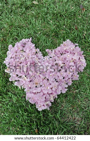 The beautiful Flower heart in lawn. - stock photo