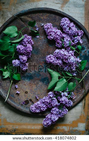 The beautiful lilac on a metallic and wooden background
