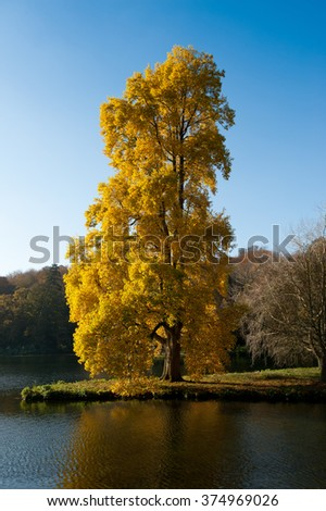 The Beautiful Stourhead Gardens in the Autumn