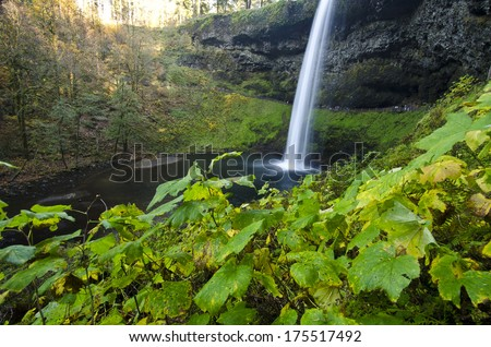 The Beautiful View Of Silver Falls - stock photo