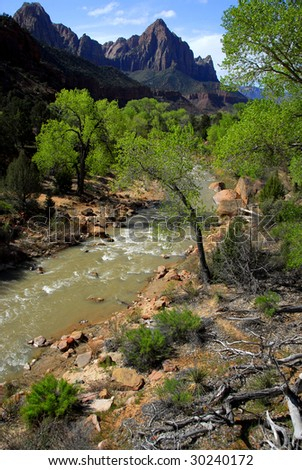 The Beautiful Virgin River Flowing Through Zion National Park - stock photo