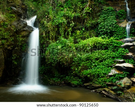 The beauty of a waterfall and green leaves of a rain-forest