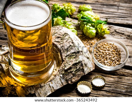 The beer style . Glass of beer on a birch stand, malt and hops on wooden background. - stock photo