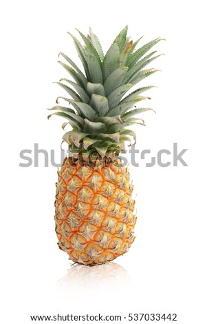 The big pineapple picked fresh from the garden, helps digestion,  isolated on white background. This has clipping path.