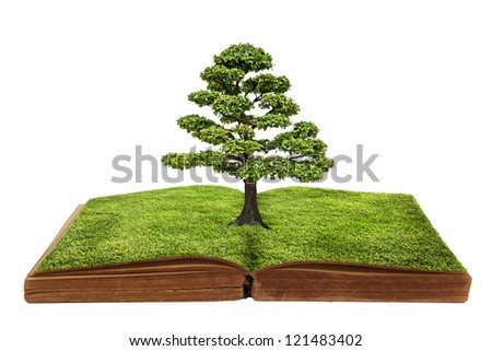 The big tree growing from a book. - stock photo