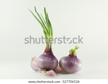 The birth of onions and that has not grown.