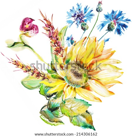 """The blue flowers of cornflowers drawn on a white background with water color paints. Album """"Bouquet of flowers."""" """"Autumn fall""""."""" Sunflower."""" - stock photo"""