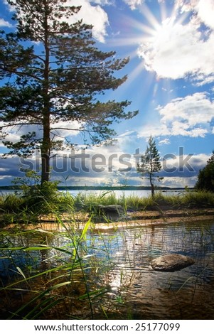 The blue sky. Cloudscape. Solar beams make the way through a cloud. A play of light in branches of pines, a cane, patches of light on water.
