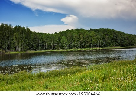 The blue sky, the green wood and meadow with a grass and wild flowers, the river in the summer - stock photo