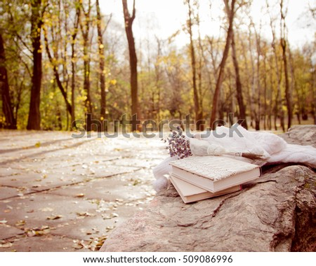 The book, knitted scarf and gloves on a rock in the autumn park. Autumn landscape