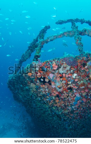 The bow of a shipwreck cover in encrusting coral - stock photo