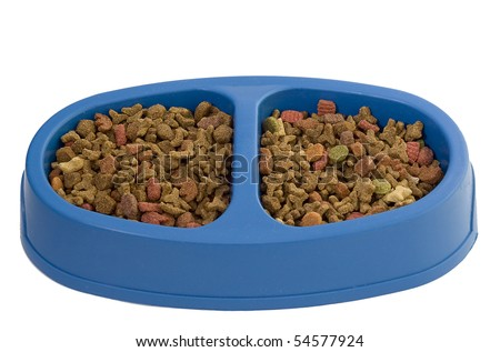 The bowl with a dry feed for cats - stock photo