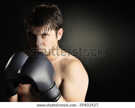The boxer - stock photo