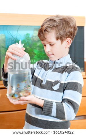 The boy holds packet with propical fish - stock photo
