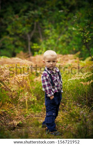 The boy in the woods among the ferns