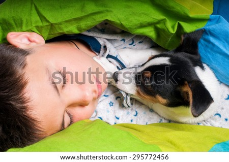 The boy is sleeping in the bed with a jack russell terrier