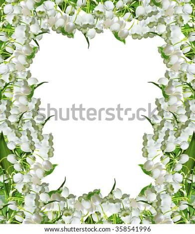 The branch of lilies of the valley flowers isolated on white background - stock photo