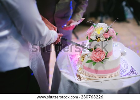 The bride and groom cut the wedding cake closeup - stock photo