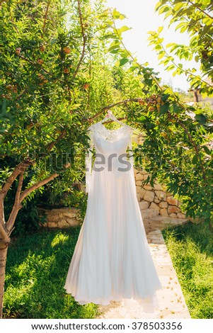The bride's dress on a hanger in the green