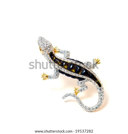 The Brooch Lizard. - stock photo