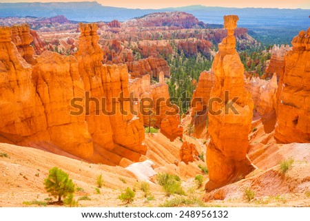 The Bryce Canyon National Park, Utah, USA - stock photo