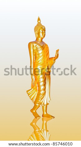 The Buddha status stand isolated on reflect background - stock photo