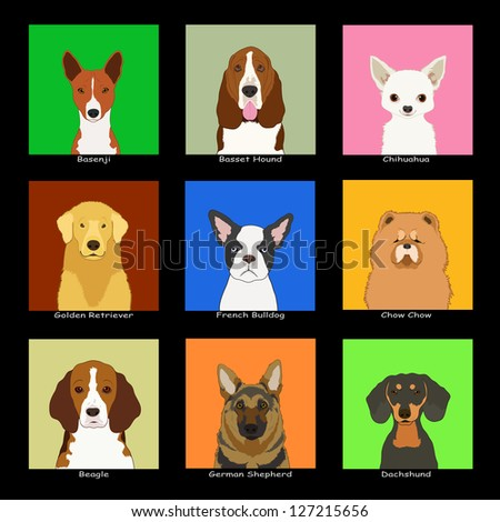 The buddy dog, Collection 02 - stock photo