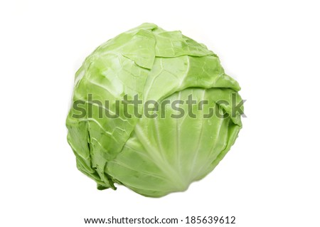 The cabbage of isolated on a white background