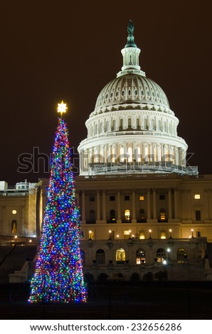 The Capitol and the Christmas tree at night - Washington DC, United States  - stock photo