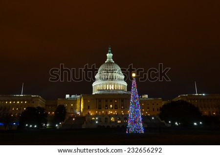 The Capitol and the Christmas tree at night - Washington DC, United States
