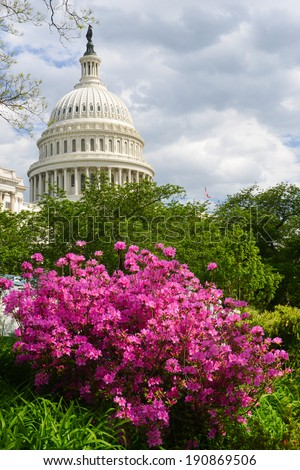 The Capitol in Spring - Washington DC, United States of America  - stock photo