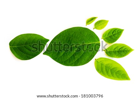 The carbon footprint is a measure of the impact our activities have on the environment, and in particular climate change. The footprint is composed of serveral differnt higly detailed leaves. - stock photo