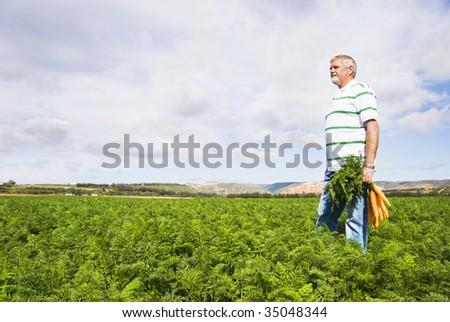 The carrot farmer - stock photo