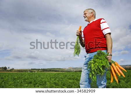 The carrot farmer - focus on the carrots - stock photo