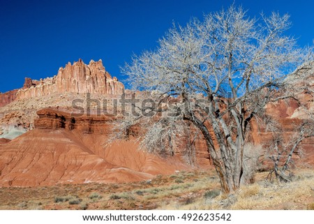 The Castle view in Capitol Reef National park, Utah
