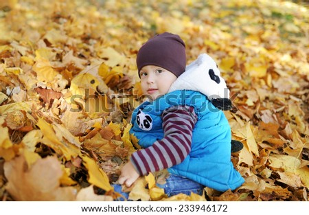 The charming kid plays in autumn park - stock photo