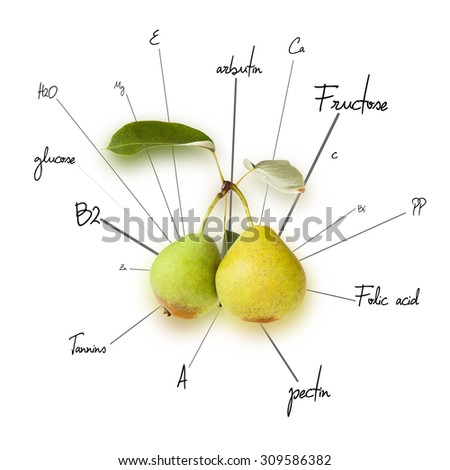 The chemical composition of pear on the white - stock photo