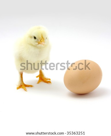 The Chick and the Egg